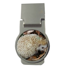 Hedgehog in Leaves Money Clip (Round) from ArtsNow.com Front