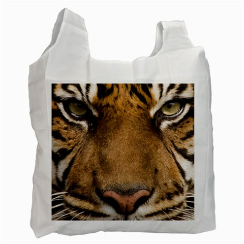 Carson's Collectibles Recycle Bag (2-Sided) of Sumatran Tiger Face (Bengal Tiger) at Sears.com