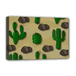 Cactuses Deluxe Canvas 18  x 12
