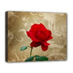 Red Rose Art Canvas 14  x 11  (Stretched)