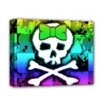 Rainbow Skull Deluxe Canvas 14  x 11  (Stretched)