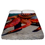 Colored Crab, Galapagos Island, Ecuador Fitted Sheet (Queen Size)