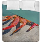 Colored Crab, Galapagos Island, Ecuador Duvet Cover Double Side (King Size)