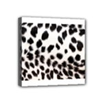 Snow Leopard	 Mini Canvas 4  x 4  (Stretched)