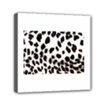 Snow Leopard	Mini Canvas 6  x 6  (Stretched)