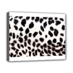 Snow Leopard	Canvas 10  x 8  (Stretched)