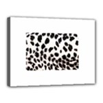 Snow Leopard	Canvas 16  x 12  (Stretched)