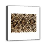 Snake Print	Mini Canvas 6  x 6  (Stretched)