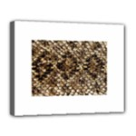 Snake Print	Canvas 14  x 11  (Stretched)