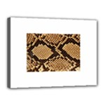 Snake Print Big	Canvas 16  x 12  (Stretched)