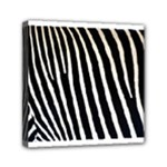 Zebra Print	Mini Canvas 6  x 6  (Stretched)