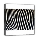 Zebra Print	Mini Canvas 8  x 8  (Stretched)