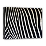 Zebra Print	Canvas 14  x 11  (Stretched)
