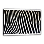 Zebra Print	Canvas 18  x 12  (Stretched)