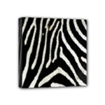 Zebra Print Big	 Mini Canvas 4  x 4  (Stretched)