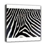 Zebra Print Big	Mini Canvas 8  x 8  (Stretched)