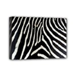 Zebra Print Big	Mini Canvas 7  x 5  (Stretched)