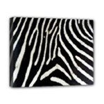 Zebra Print Big	Canvas 10  x 8  (Stretched)