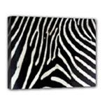 Zebra Print Big	Canvas 14  x 11  (Stretched)