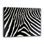 Zebra Print Big	Canvas 16  x 12  (Stretched)