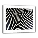 Zebra Print Big	Canvas 20  x 16  (Stretched)