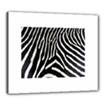 Zebra Print Big	Canvas 24  x 20  (Stretched)