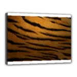 Tiger Print Dark	Canvas 16  x 12  (Stretched)