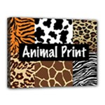 Animal Print	Canvas 16  x 12  (Stretched)