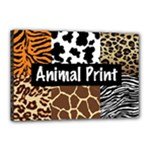 Animal Print	Canvas 18  x 12  (Stretched)