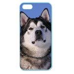 Use Your Photo Alaskan Malamute Dog Apple Seamless iPhone 5 Case (Color)