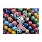 Easter Egg Bunny Treasure A4 Sticker