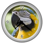 Handsome Parrot Wall Clock (Silver)