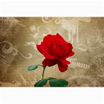 Red Rose Art Canvas 24  x 36