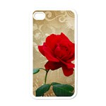 Red Rose Art iPhone 4 Case (White)