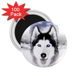 Wolf Moon Mountains 2.25  Magnet (100 pack)