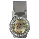 Koala Bear Money Clip (CZ)