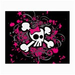 Girly Skull & Crossbones Small Glasses Cloth (2 Sides)
