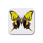 Butterfly M2 Rubber Square Coaster (4 pack)