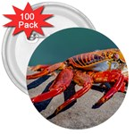 Colored Crab, Galapagos Island, Ecuador 3  Buttons (100 pack)