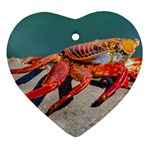 Colored Crab, Galapagos Island, Ecuador Heart Ornament (Two Sides)
