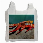 Colored Crab, Galapagos Island, Ecuador Recycle Bag (One Side)
