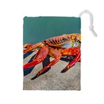 Colored Crab, Galapagos Island, Ecuador Drawstring Pouch (Large)