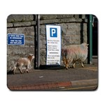 Sheep in the carpark Mousemat
