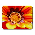 Annual Zinnia Flower   Small Mousepad
