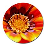 Annual Zinnia Flower   Round Mousepad