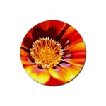Annual Zinnia Flower   Rubber Round Coaster (4 pack)