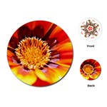 Annual Zinnia Flower   Playing Cards (Round)