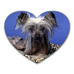 CUTE Dogs Mousepad (Heart)