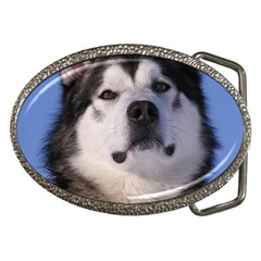 Alaskan Malamute Dog Belt Buckle from ArtsNow.com Front