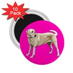 BP Yellow Labrador Retriever Dog Gifts 2.25  Magnet (10 pack)